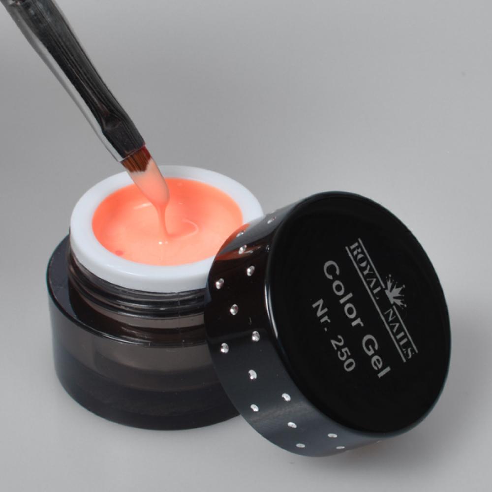 gel de couleur pour ongles n 250 tasty apricot gel uv boutique en ligne. Black Bedroom Furniture Sets. Home Design Ideas